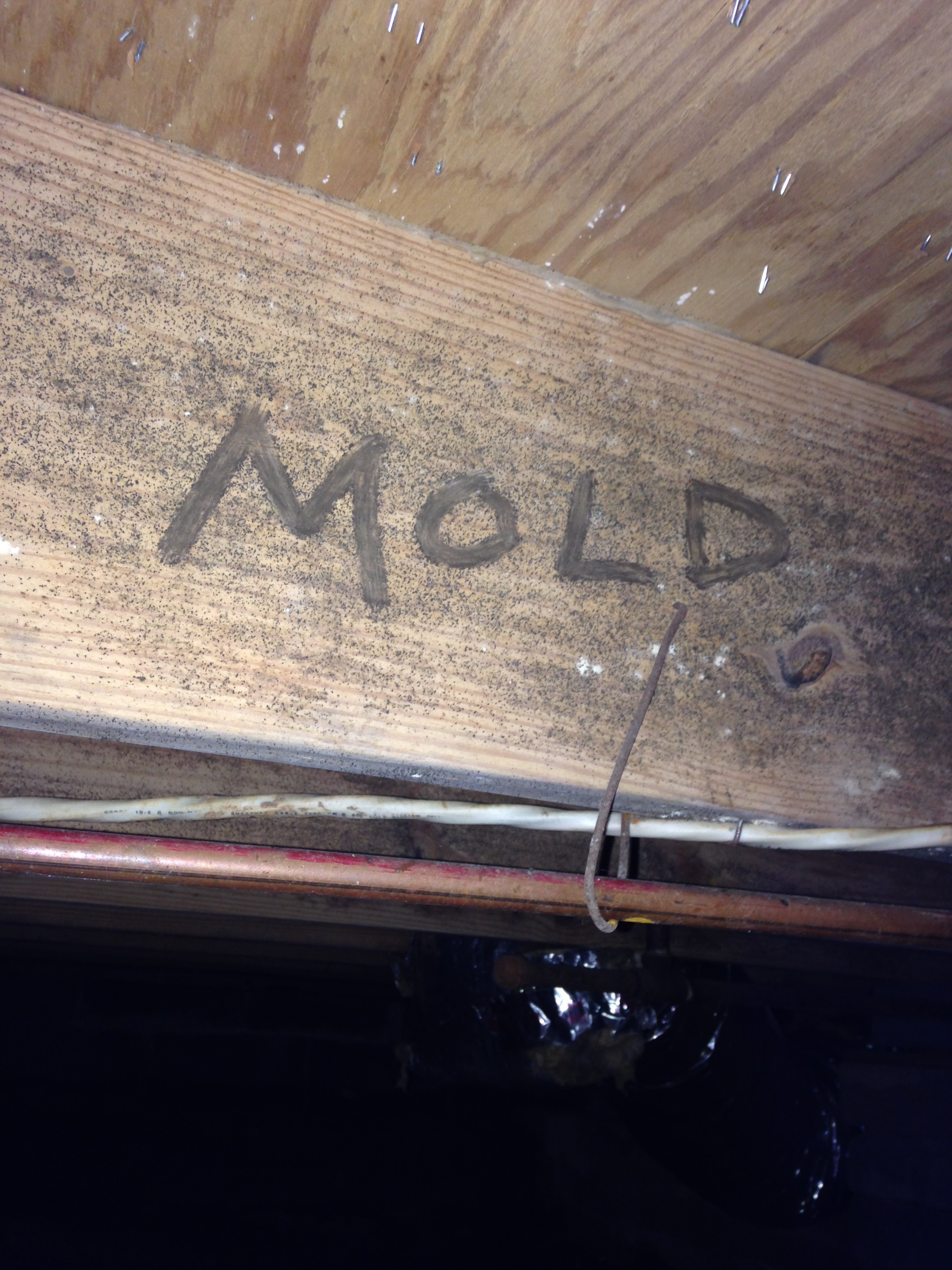Mold treatment crawl space and basement waterproofing in for Basement floor treatments