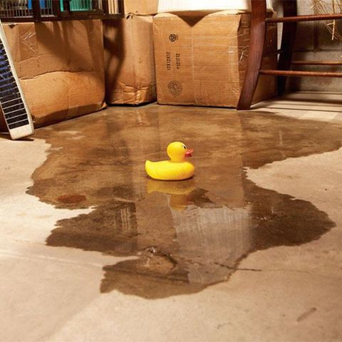 Basement waterproofing crawl space and basement for Basement floor treatments